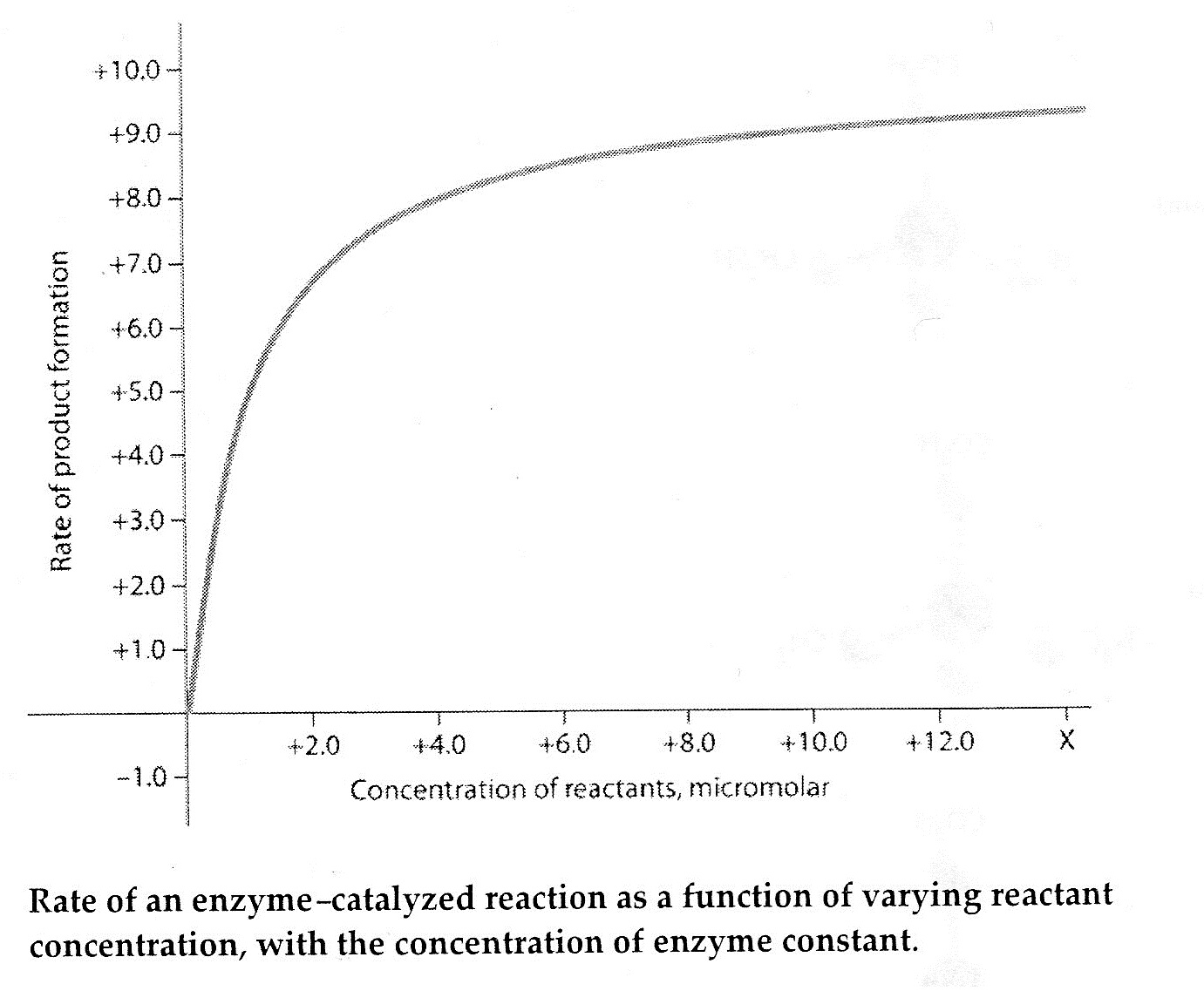 In the figure, why does the reaction rate plateau at higher reactant concentrations?